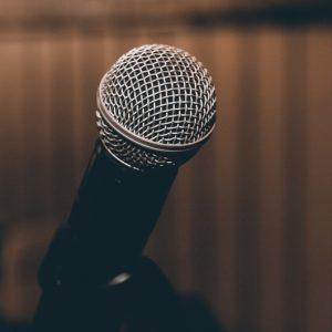 stage de chant Paris coaching adulte débutant avancé chanteur chanteuse technique vocale respiration spectacle casting concert comédie musicale classe école stage formation professeur Éveil de l'Acteur